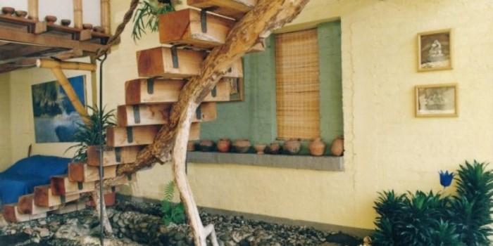 Inf casa hotel zen informaci n general for Jardin zen en casa